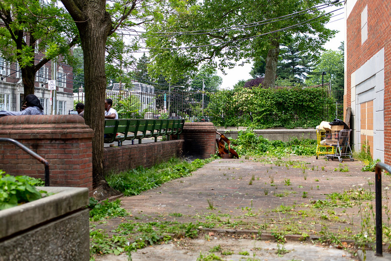 20190604_Germantown Clean up_Margo Reed Photo-18.jpg