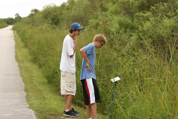 2006 Everglades