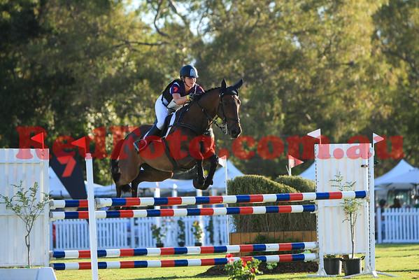 2016 12 10 Eventing in the Park Grand Prix 29 Emily Gray Jocular Vision