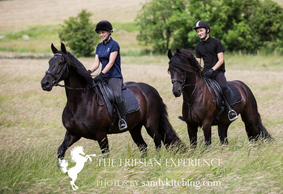 Charlie & Cody Friesian Experience July 2016