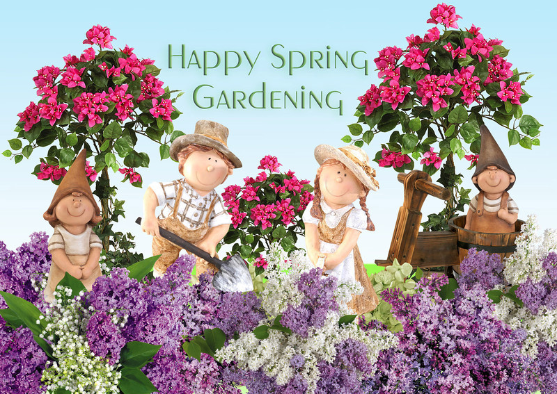 Spring-Gnomes.jpg