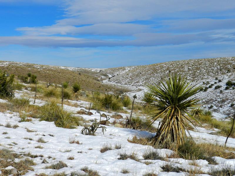 Pinto Canyon snow7.jpg