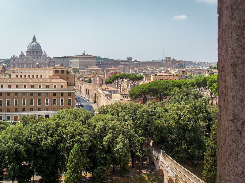 tree-lined path leading to the vatican
