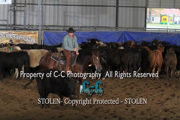 5000. Novice Horse CMCHA 4/17