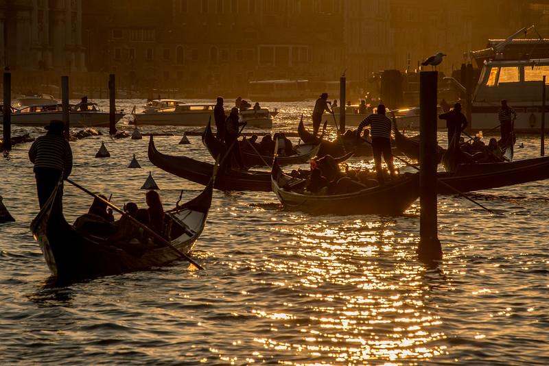 Venice 2015 (138 of 442).jpg