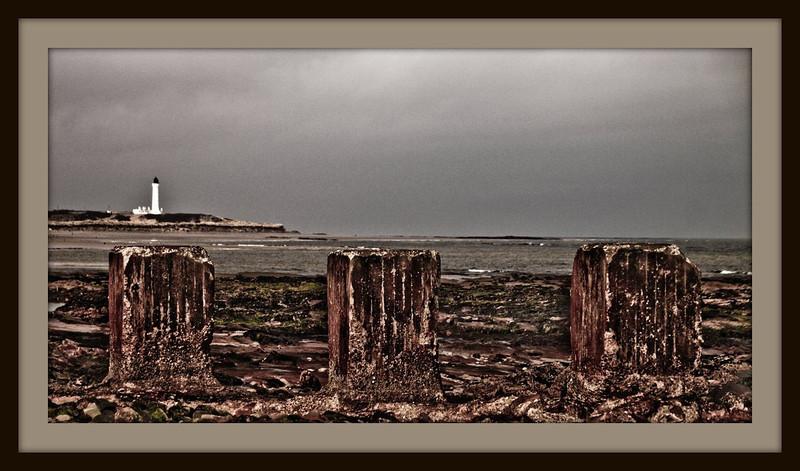 Moray Firth & North East Coast