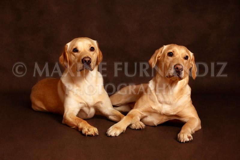 Spalding-9351 Ailsa & Brodie.jpg