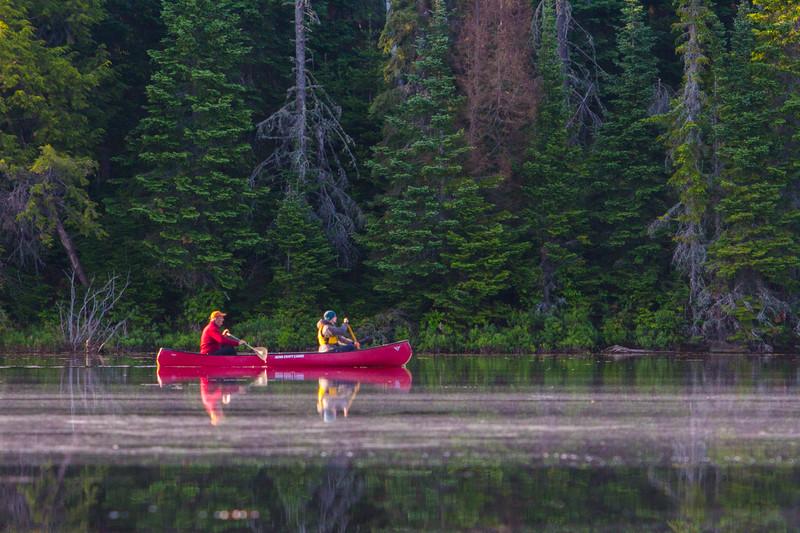 moose-safari-algonquin-park-ontario-40.jpg