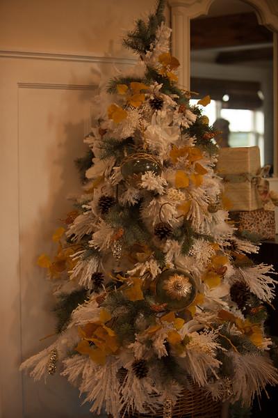 Bethany christmas RAW (75 of 360).JPG