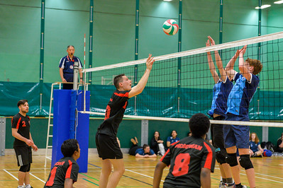 Volleyball (Mens)