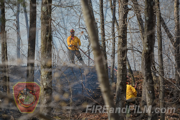 Schuylkill County - Blythe Twp. - Brush Fire - 04/24/2016