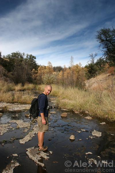 Chris Schmidt, an expert on ponerine ants, crosses a stream in southern Arizona.