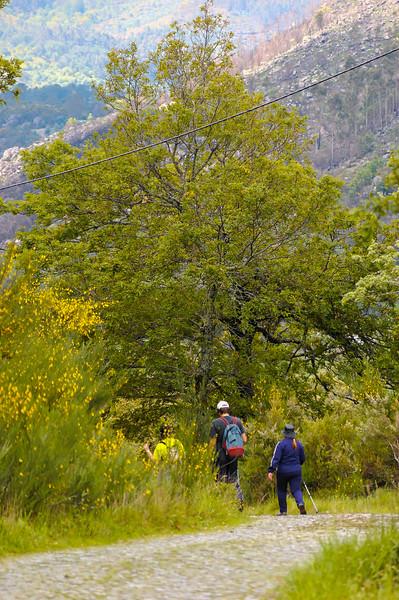 Vouzela-PR2 - Um Olhar sobre o Mundo Rural - 17-05-2008 - 7404.jpg