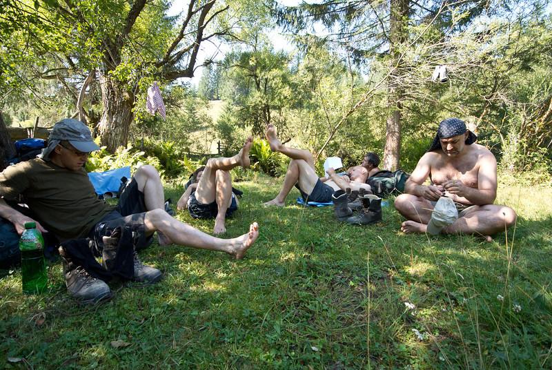 Snídaně v trávě v podání kořenů