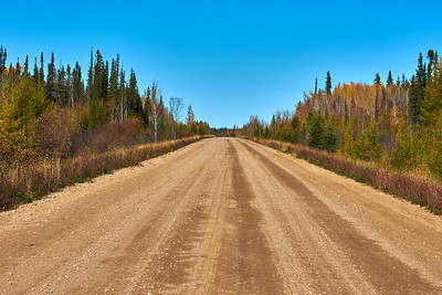 Sunny Day On A Gravel Road