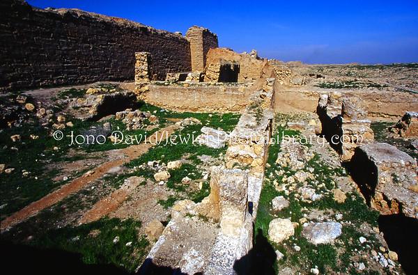 SYRIA, Dura Europos. Dura Europos Synagogue, dating from 244 CE (ruins) (2004)