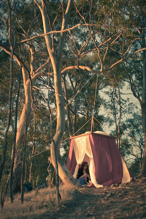 alexandergardner-Valentines2012-20120214-3