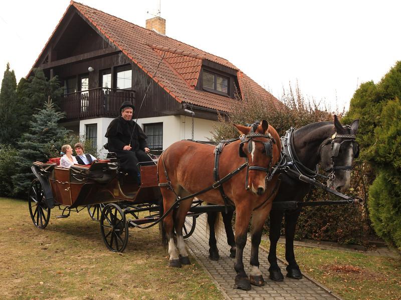 IdyllicPrague-Weddings-Other
