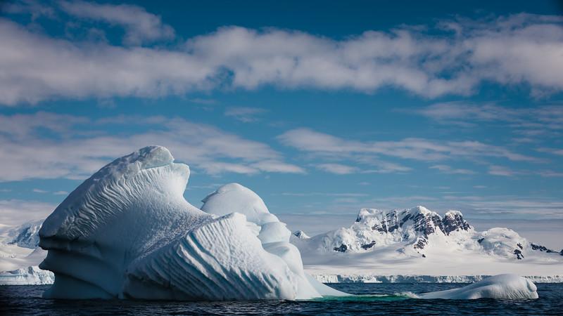 _MG_7306_20170122_Antarctica.jpg