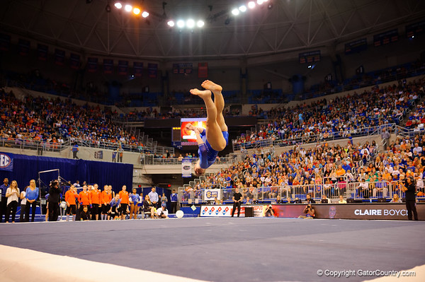 Florida Gators Gymnastics vs Georgia Bulldogs - Super Gallery - 1-30-2015