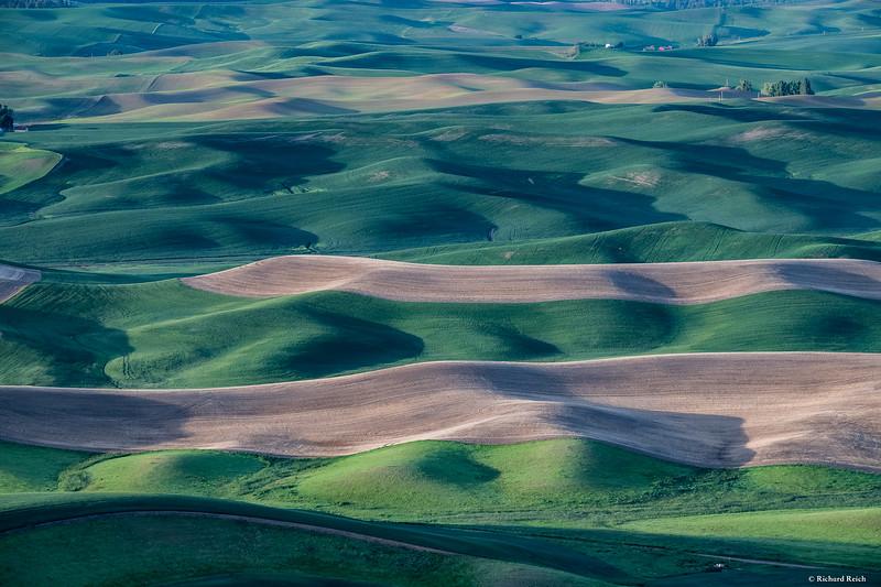Steptoe Butte-4387.jpg