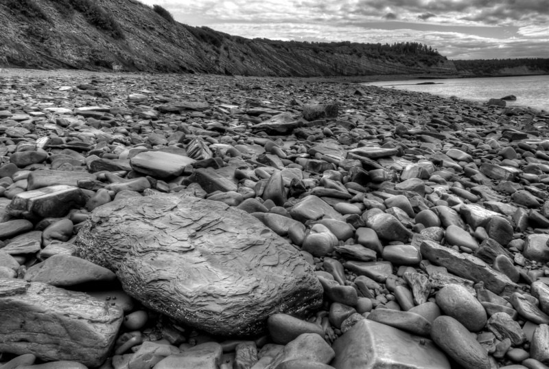 Fossilized rocks near Joggings Fossil Cliffs near Nova Scotia
