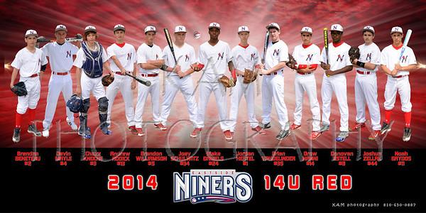 2014 EASTSIDE NINERS