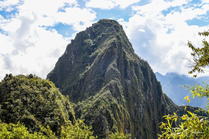2018 Machu Picchu-31.jpg