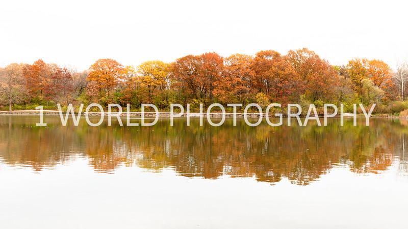 202010282020_10_28 Herrick Lake FP015--6.jpg