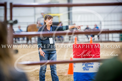 Midwest Horse Fair Saturday