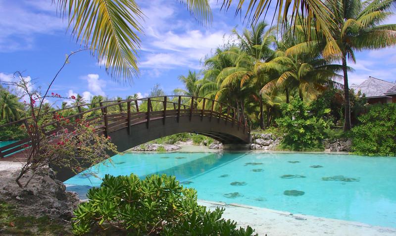 The Lagoonarium - St. Regis Resort - Bora Bora