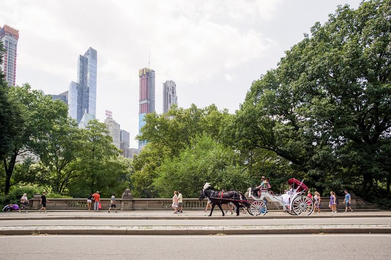Central Park Wedding - Ronica & Hannah-36.jpg