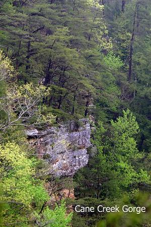 Cane Creek & Piney Creek Gorges