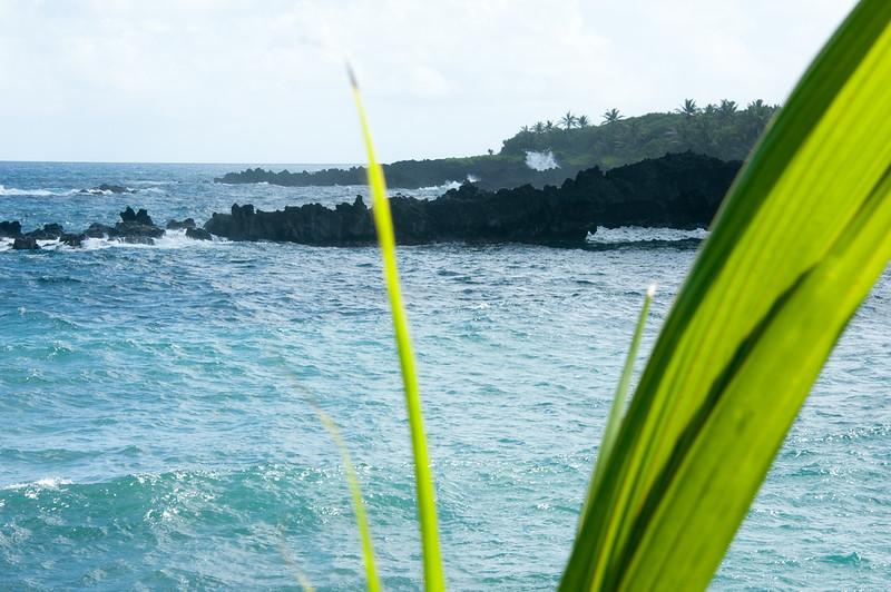 Maui_20181024_165837-080.jpg