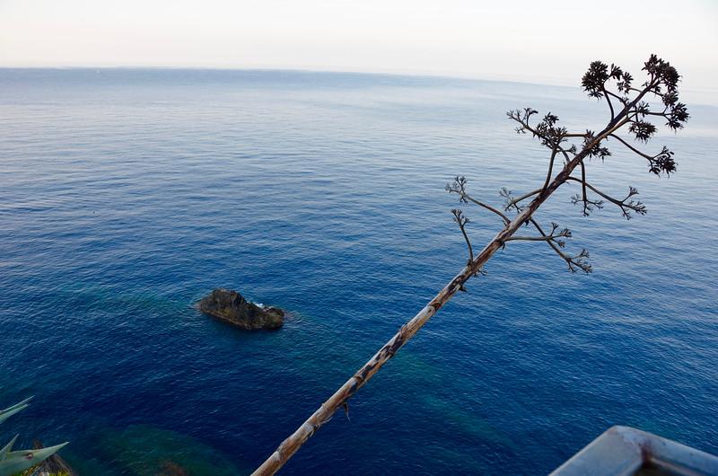 Via Dell'Amore. Cinque Terre