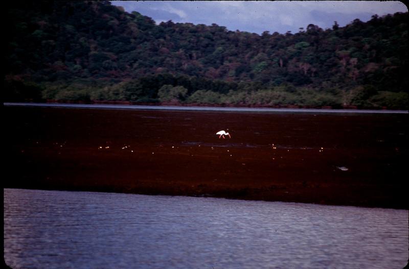MadagasgarCostaRica2_075.jpg