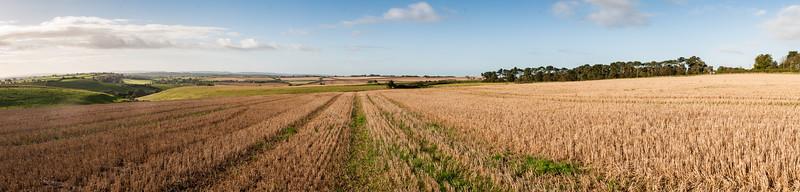Stubble field on Seven Wells Down