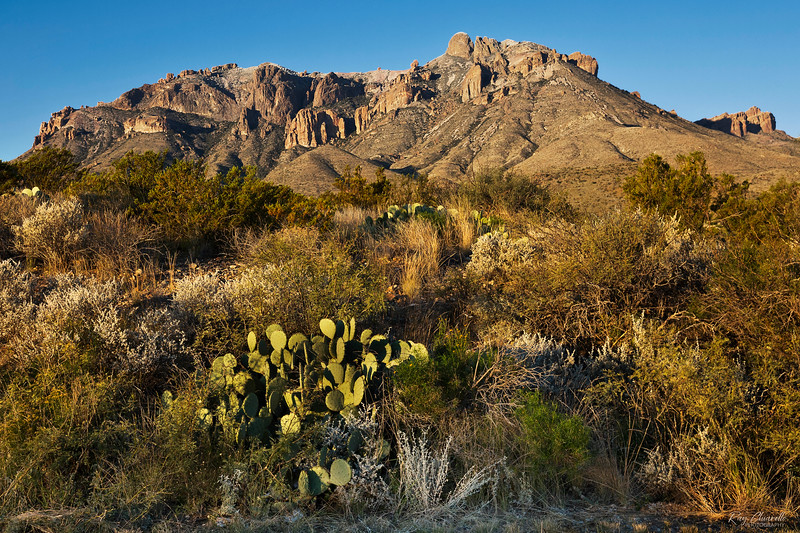 Sunrise on the Eastern Slopes of the Chisos Mountains