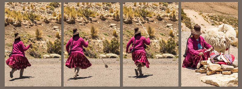 Arequipa-Colca_Canyon-Best-Pano-003.jpg