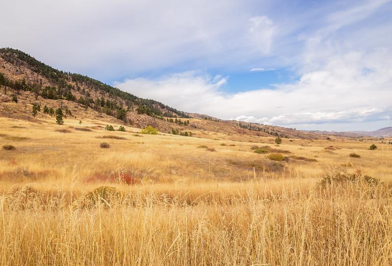 Lory State Park - Colorado