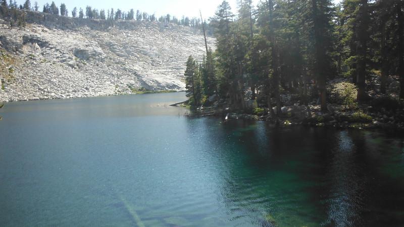 sequoia 113.JPG