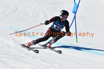Beaver Valley Club Championships GS - 2020