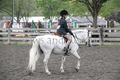 Ring III: Pre-Children's Hunter/Equitation Pony