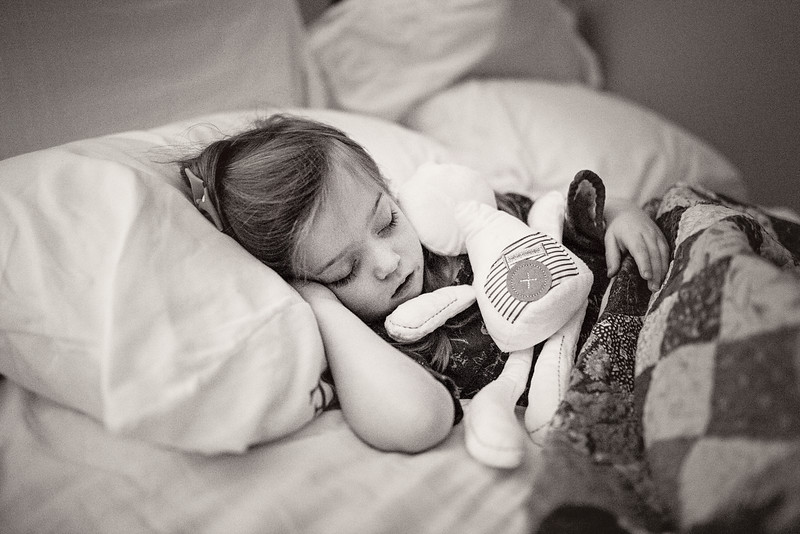 2016 Dec Toyzkit Stuffed Rabbit Toy-2669.jpg