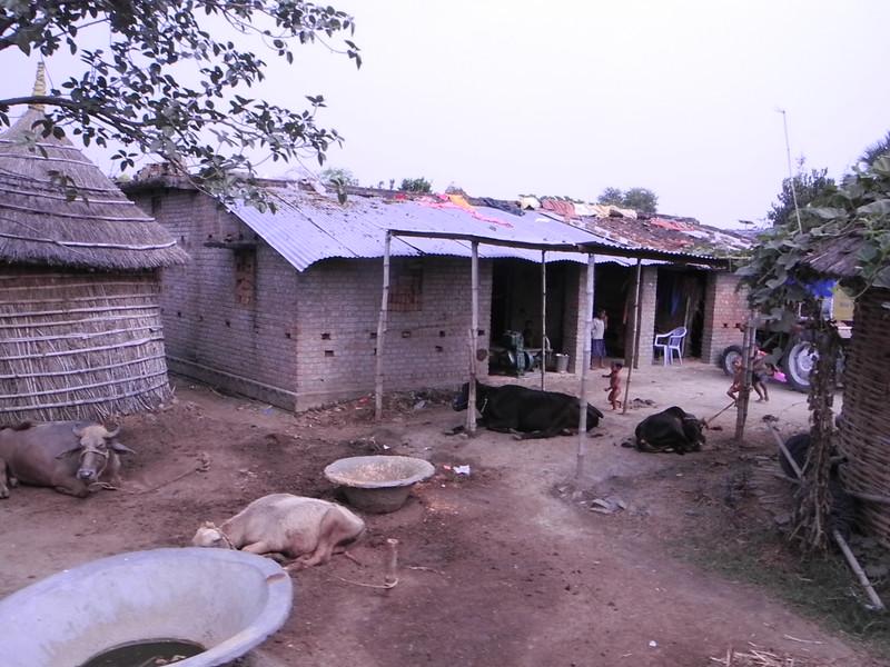 india&nepal2011 267.jpg