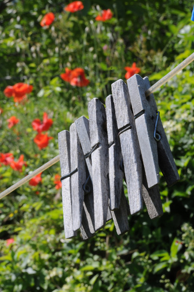 france clothespins
