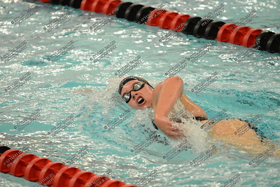 UC Swimming 2013-14