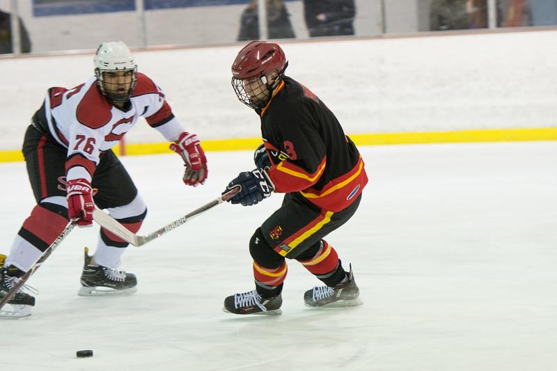 20180202 BI Hockey 024.jpg