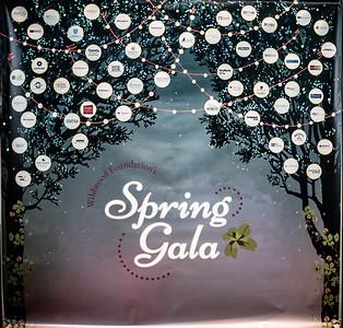 2019 Wildwood Spring Gala