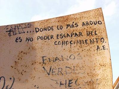 GRAFFITI OMNI (29).jpg